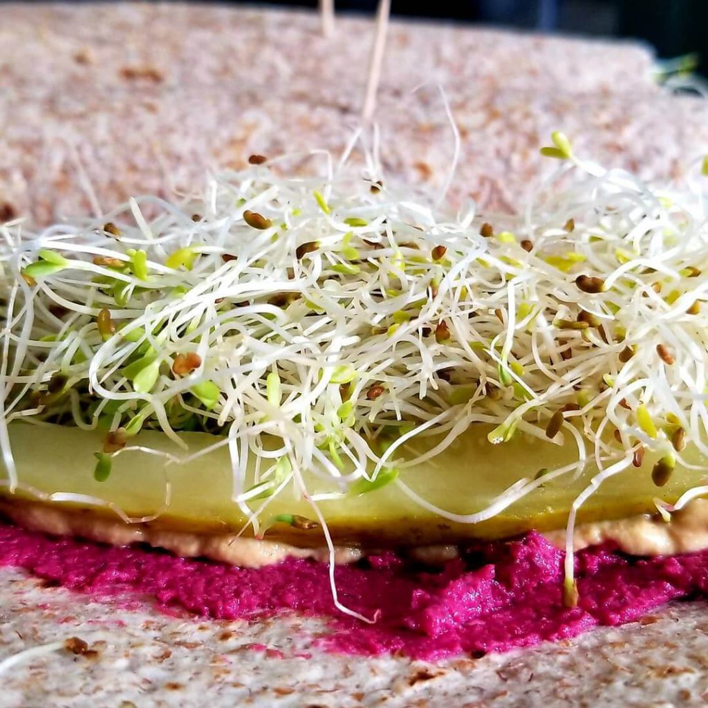 Sprouted grain wrap with Solar Power Health's Roasted Beet and Dill Hummus, pickles, and alfalfa sprouts